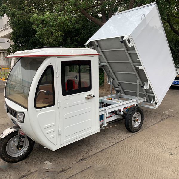 Weather Proof Enclosed E Cargo Tricycle(3W)10