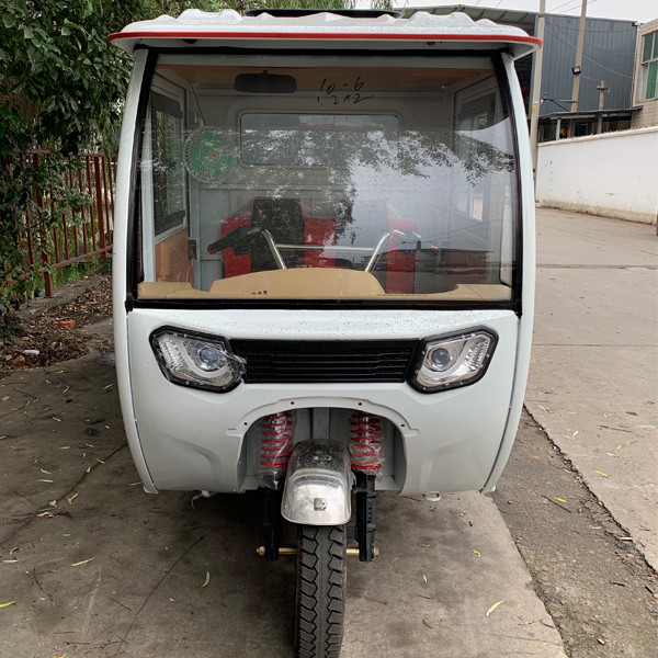 Weather Proof Enclosed E Cargo Tricycle(3W)3