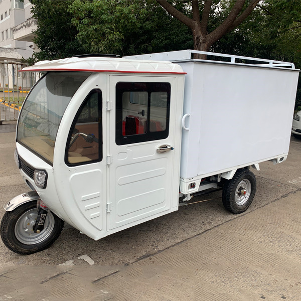Weather Proof Enclosed E Cargo Tricycle(3W)9